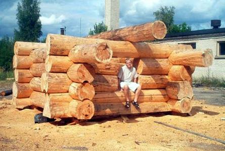 Case Di Tronchi Di Legno : Case in tronchi di legno canadesi: ansonia u2013 kit di costruzione